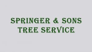 springer And Son Tree Services